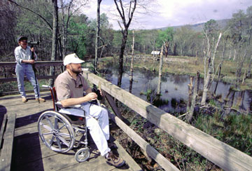 birdwatching in a wheelchair